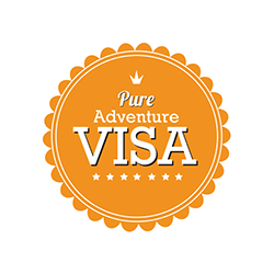 VISA Credit Cards – August 2017